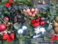 Karácsonyi pályázat - Udvari disz