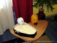 Halloween pályázat - Tök cukorka tartó