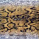 Szalvéta - Állatbőr - Kígyó