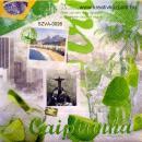 Szalvéta - Rio - Caipirinha koktél